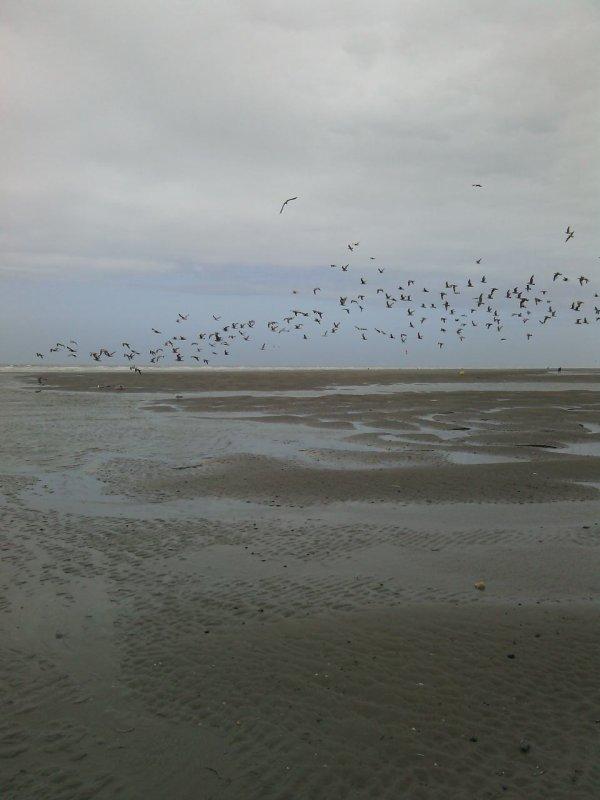 Une journée a la mer