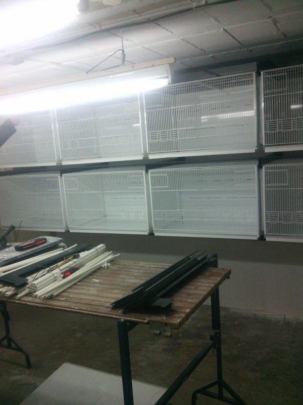 Montage des cages terenziani
