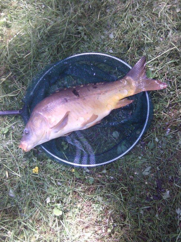 Aujourd'hui partie de pêche