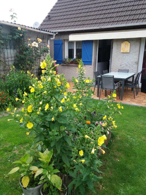L onagre de mon jardin