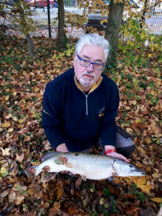 La pêche du jour brochet de 85 cm à ermenonville