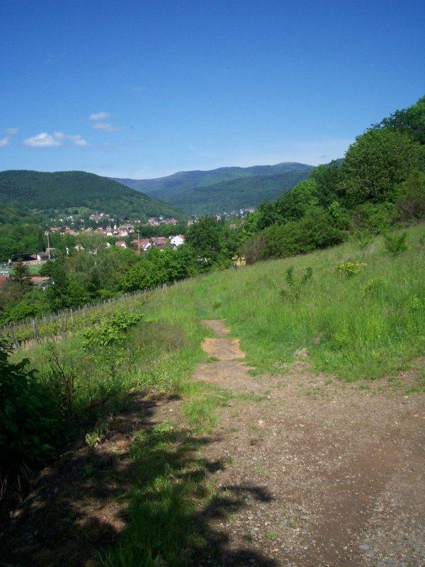 Promenade au dessus de chez nous dimanche 20 Mai 2012