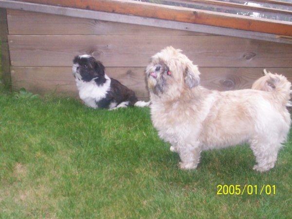 Wendy  et  Heelou