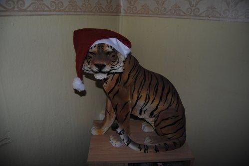 mon tigre de noel mdr