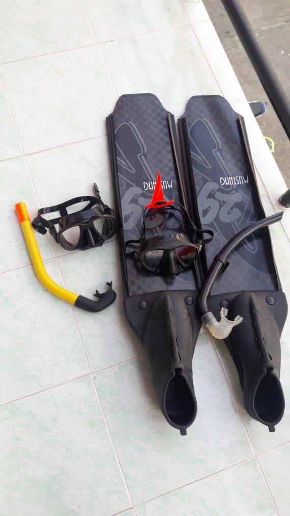Plonger:Pour quoi faire?