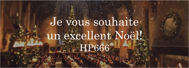 Un Noël Harry Potter