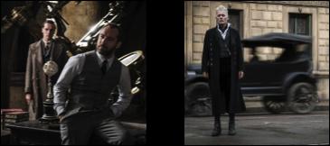 Les Animaux Fantastiques, Les Crimes de Grindelwald - Le film