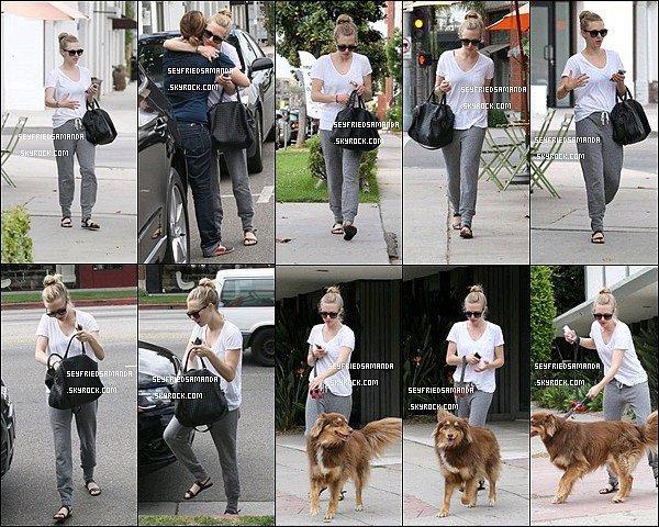 27 aout 2013 : Amanda est allée boire un verre avec un de ses amis à West Hollywood dans Los AngelesPlus tard dans la journée Miss Seyfried a également emmené Finn chez le toiletteur, il en est ressorti tout beau et propre