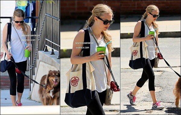 6 juillet 2014 : Amanda & Finn se promenant dans les rues de Williamstown au Massachusetts