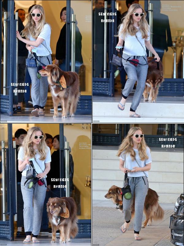 21 octobre 2014: Notre belleAmanda et son chien Finn ont été repérés sur le shopping à Barneys New York à Beverly Hills, en Californie.