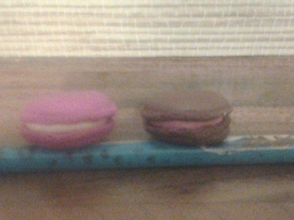 Macarons Franboise/Vanille et Chocolat/Fraise