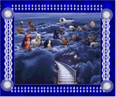 La légende du Pont de l'Arc-en-Ciel