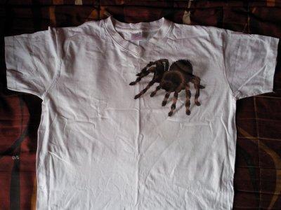 T-shirt araignée!