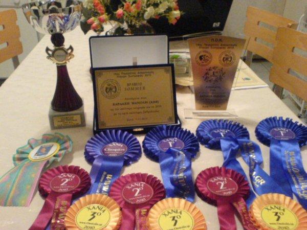14th PanCretan Canaty Contest Award's