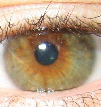 <3 a deux beau yeux <3