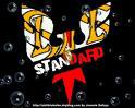 Photo de standard-de-liege-12