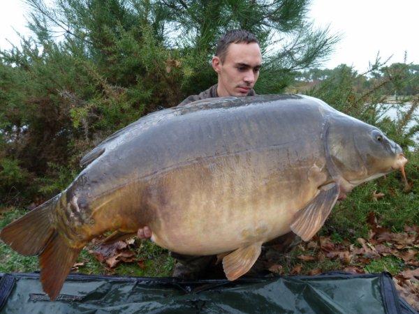 pur fish de 24kg
