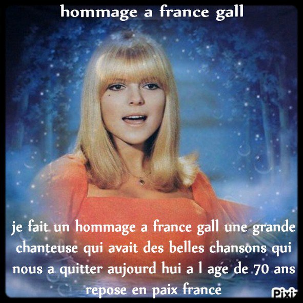 HOMMAGE A FRANCE GALL