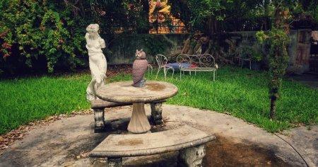Offrez-vous la Villa la plus hantée de Miami (Floride)
