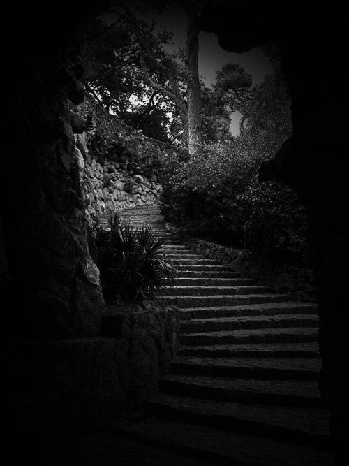 Dans la nuit noire, une fourmi noire sur une pierre noire, Dieu la voit.