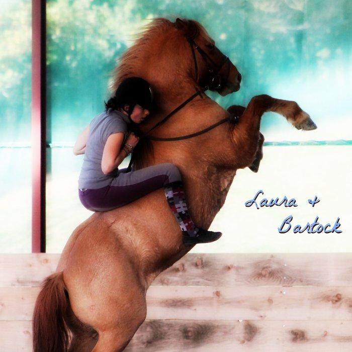 Blog de mon poney & partenaire d'éthologie : Bartock !