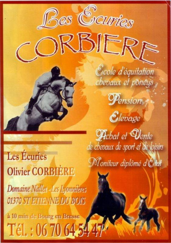 Concours complet  PRO1 - Vedène (84)