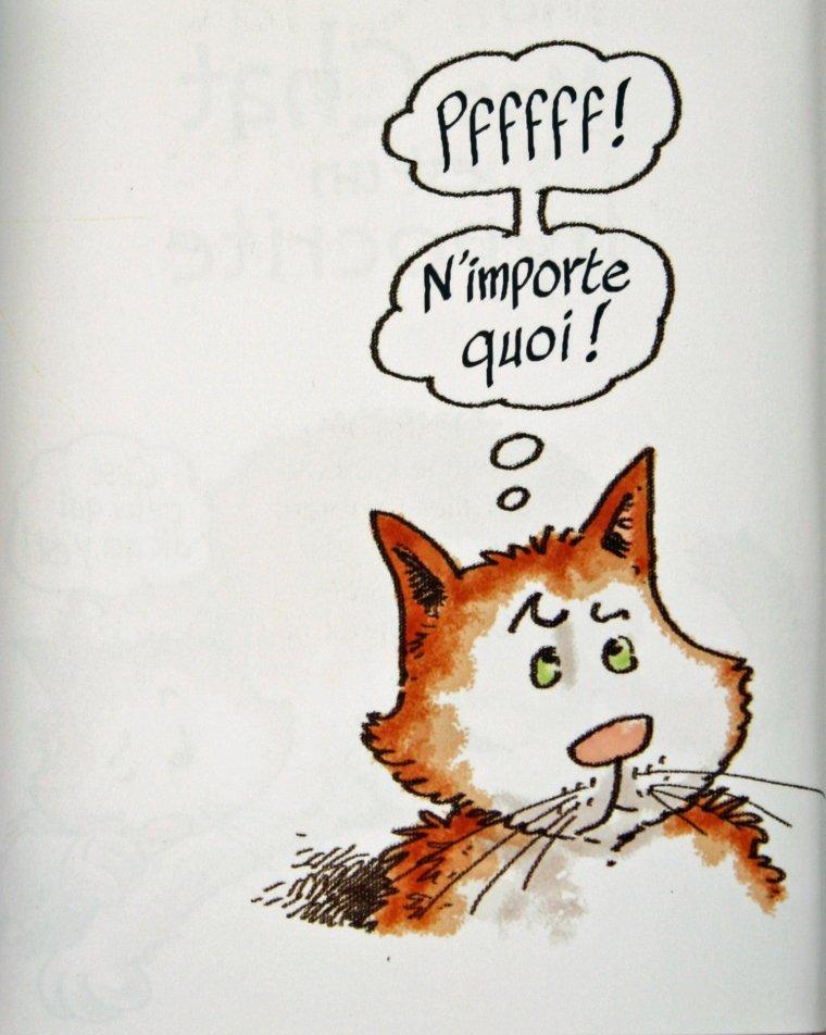 Une histoire de chat
