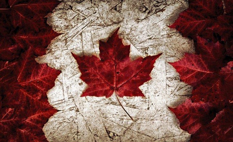 """""""Ma cabane au Canada"""""""