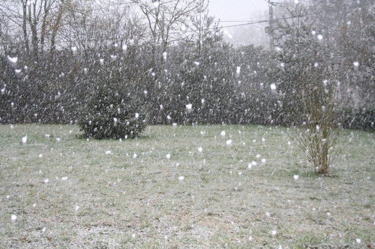 Il a neigé ce matin