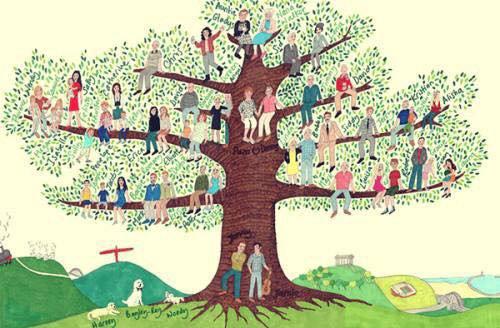 Que pouvez-vous apprendre de votre arbre généalogique?