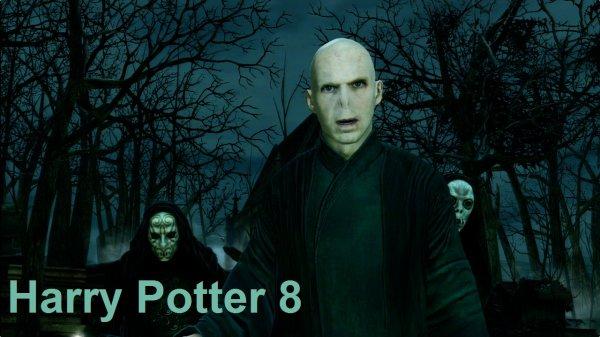 Harry Potter 8: Du mauvais ou du vrai?