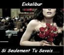 Photo de exkalibur