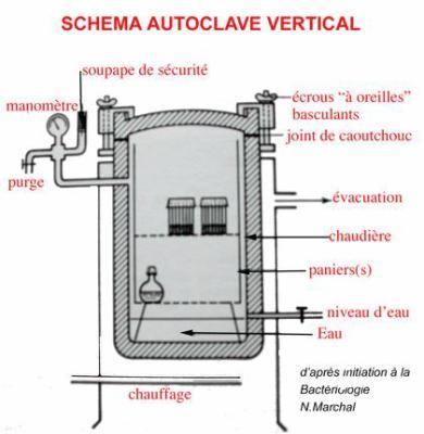 La sterilisation manipulateur en radiologie for Autoclave funzionamento schema