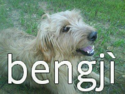 bengji