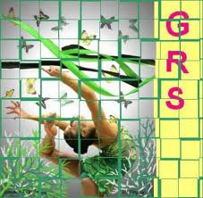 quelques nouvelles images de GRS :