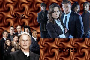 fiction NCIS/BONES partit 1