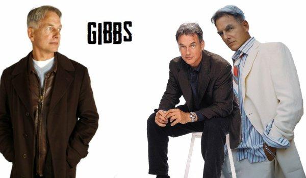 montage Gibbs