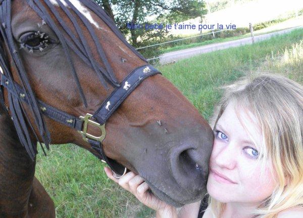 le cheval c'est plus qu'une passion c'est une histoire d'amour qui ne risque jamais de se briser tellement elle est forte.
