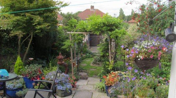 My Garden 2015..