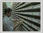 Les archives nazies bientôt ouvertes aux historiens