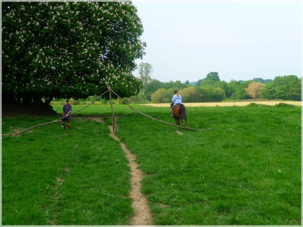 """""""Il est facile de monter sur ses grands chevaux, mais essayer donc d'en descendre gracieusement ... !"""" (Jones Franklin)"""