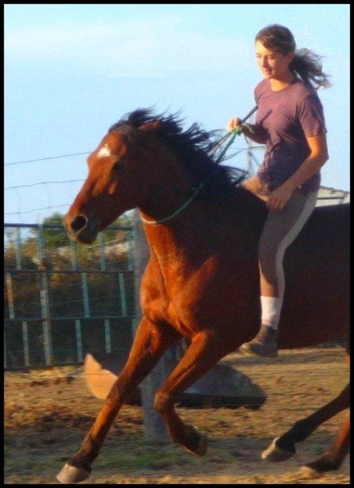 Un poney, une amitié, une confiance :) Dix ans et l'attachement ne faiblis pas, bien au contraire .. ♥