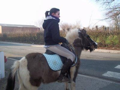 On ne renonce jamais aux chevaux. ...x3