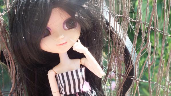 Alice sous le ciel de l'été