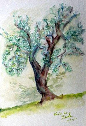 une petite semaine à Florence en octobre pour finir le carnet d'aquarelle