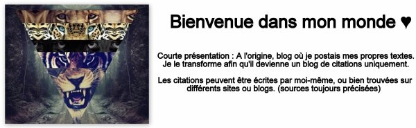Blog De Citation Evasion Citations Skyrock Com