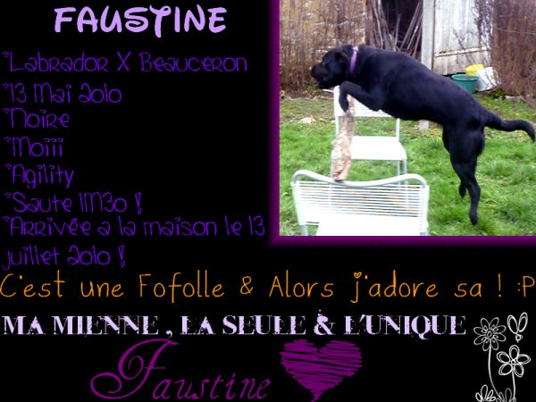 Présentation : Faustine byy FauFau