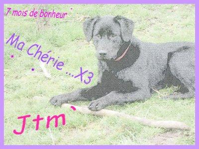 Faustine a 9 mois !!