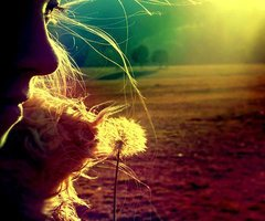 Rêve ta vie et vis tes rêves