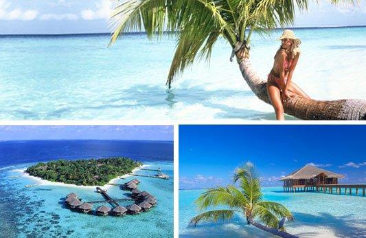 l'ile maldive